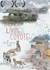 Living-with-coyote